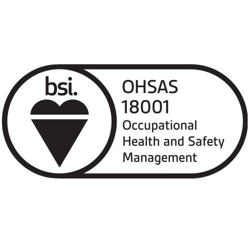 Another successful BSI audit!